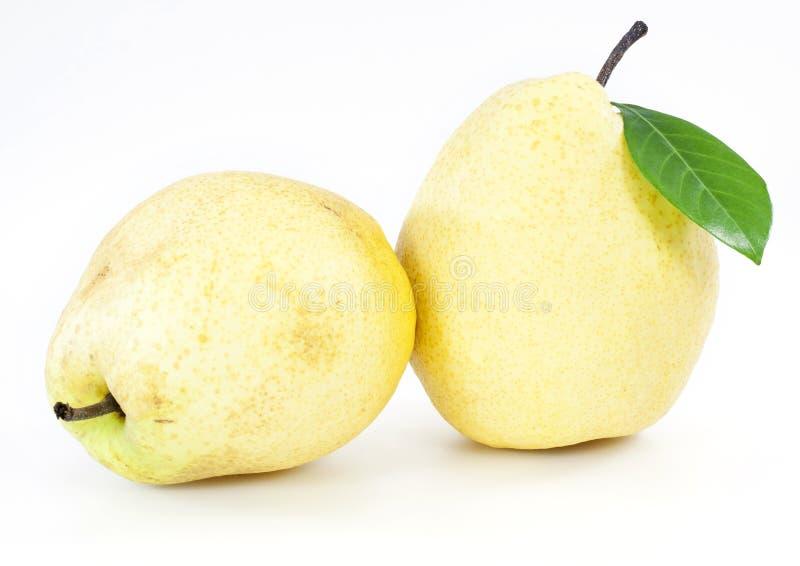 Frutas frescas de la pera fotografía de archivo