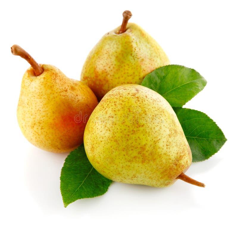 Frutas frescas de la pera con las hojas verdes fotografía de archivo libre de regalías