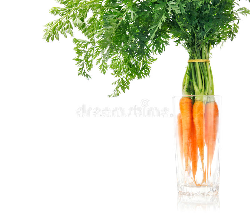 Frutas frescas de la zanahoria con las hojas verdes fotografía de archivo libre de regalías