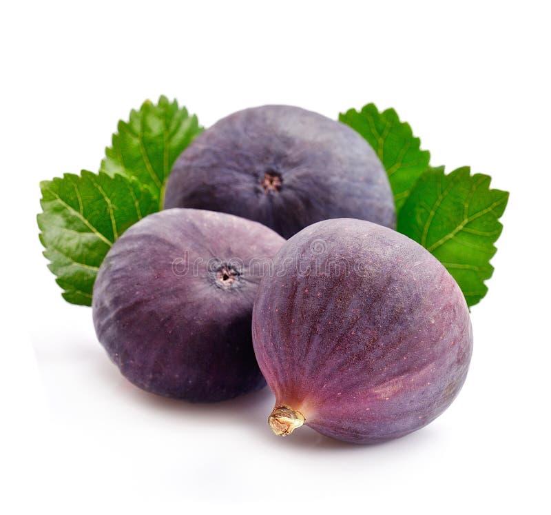 Frutas frescas de los higos fotos de archivo libres de regalías