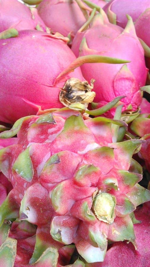 Frutas frescas del dragón foto de archivo libre de regalías