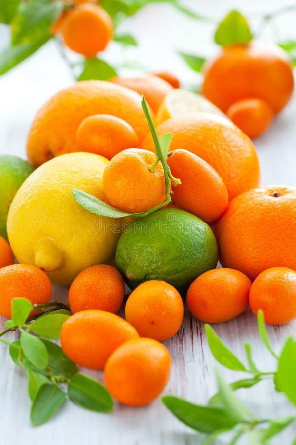 Frutas frescas do citrino fotos de stock royalty free