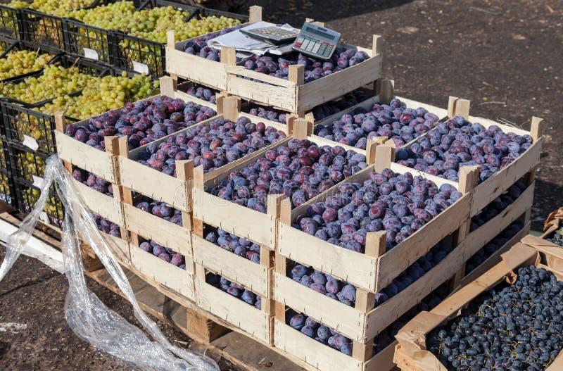 Download Frutas Frescas Incluyendo Las Uvas Y Los Ciruelos Para La Venta Imagen de archivo - Imagen de grupo, retail: 44853801