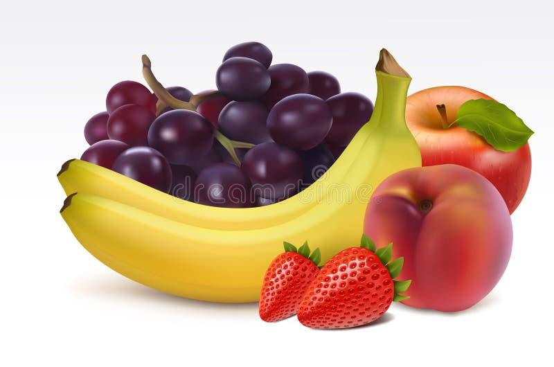 Frutas frescas maduras ilustração do vetor