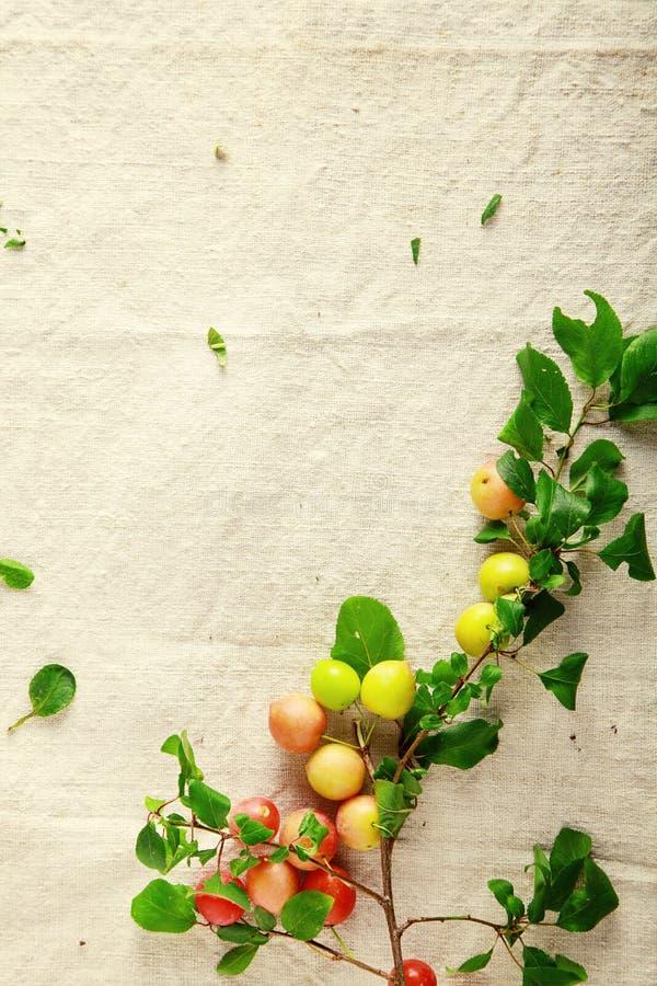 Frutas frescas rojas y amarillas dulces en el paño imagenes de archivo