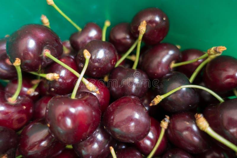 Frutas maduras de la cereza dulce en cubo verde fotografía de archivo