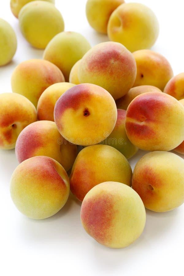 Frutas maduras do alperce japonês foto de stock royalty free