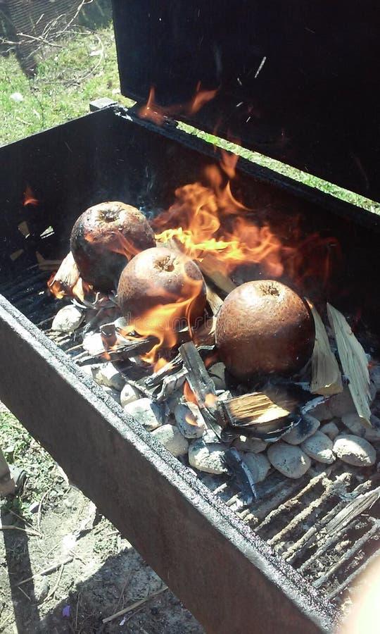 Frutas-pão quentes do fogo fotografia de stock