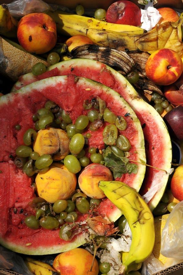 Frutas podres fotografia de stock