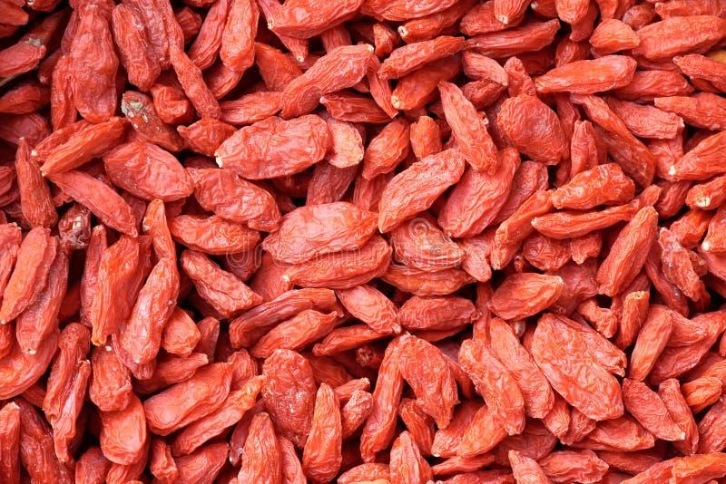 Frutas secadas da nêspera fotografia de stock royalty free