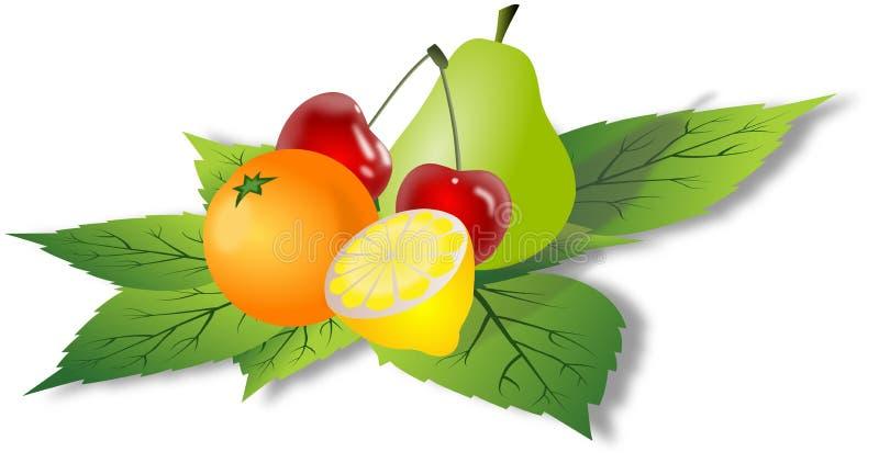 Frutas simples en las hojas verdes stock de ilustración