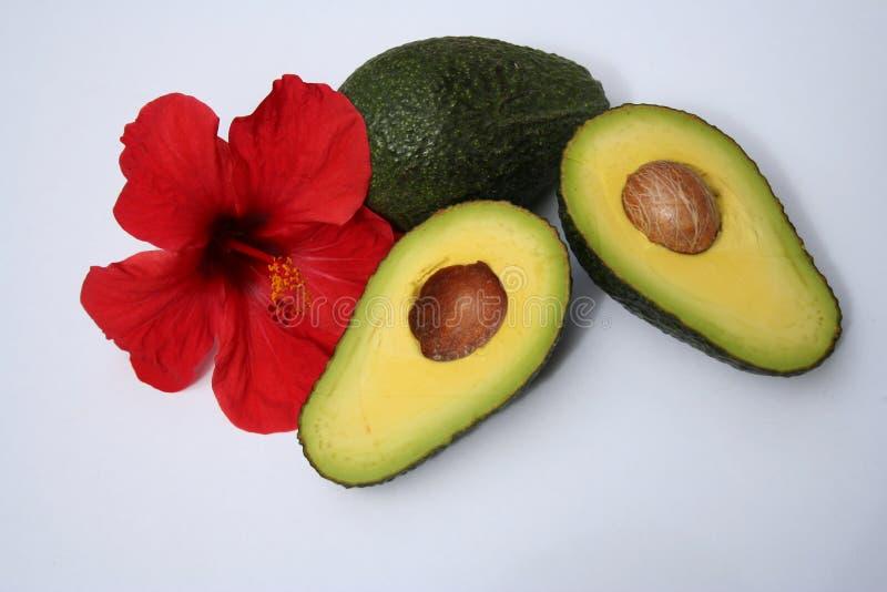 Download Frutas tropicales foto de archivo. Imagen de vitamina, exótico - 181172