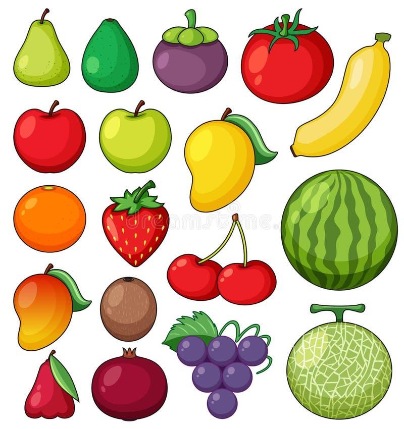 Frutas tropicales en el fondo blanco ilustración del vector