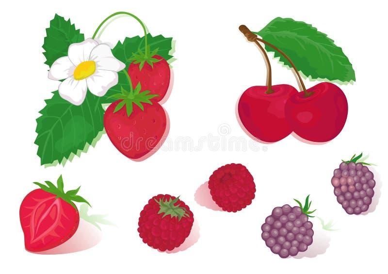 Frutas vermelhas ilustração stock