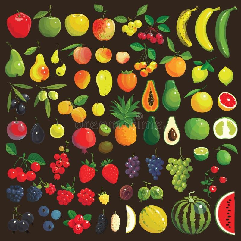 Frutas y bayas ilustración del vector