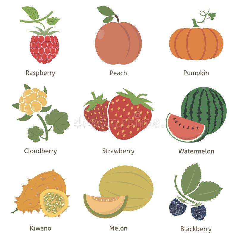Download Frutas y bayas ilustración del vector. Ilustración de alimento - 44851645