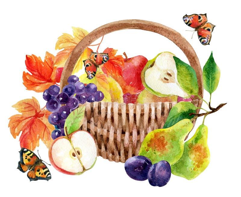 Frutas y bayas en cesta libre illustration
