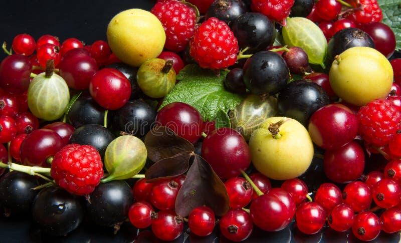 Frutas y bayas jugosas fotografía de archivo libre de regalías