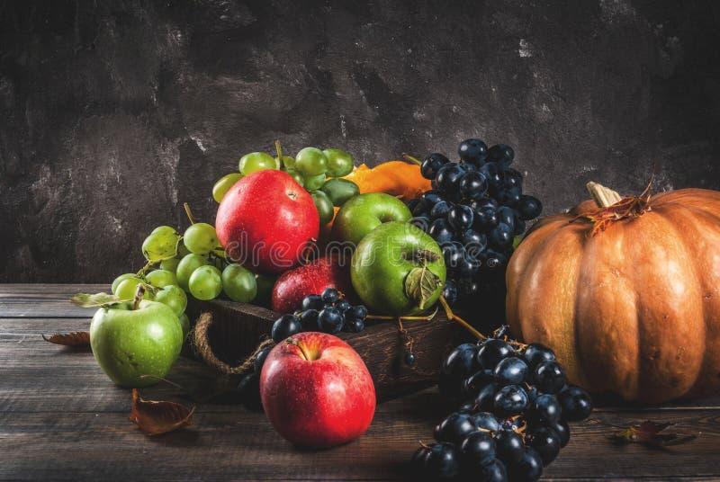 Frutas y calabaza estacionales de la caída imagen de archivo libre de regalías