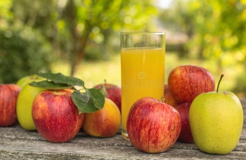 Frutas y jugo foto de archivo libre de regalías