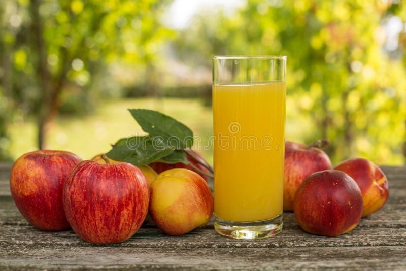 Frutas y jugo fotografía de archivo