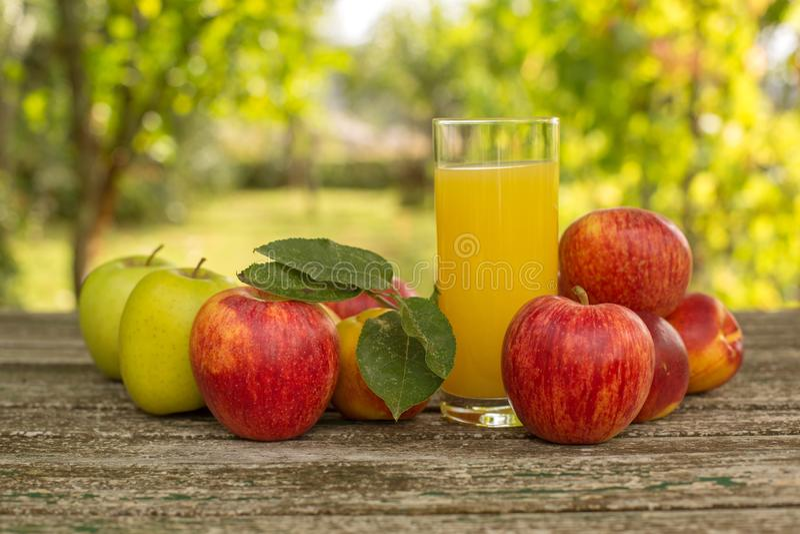Frutas y jugo imágenes de archivo libres de regalías