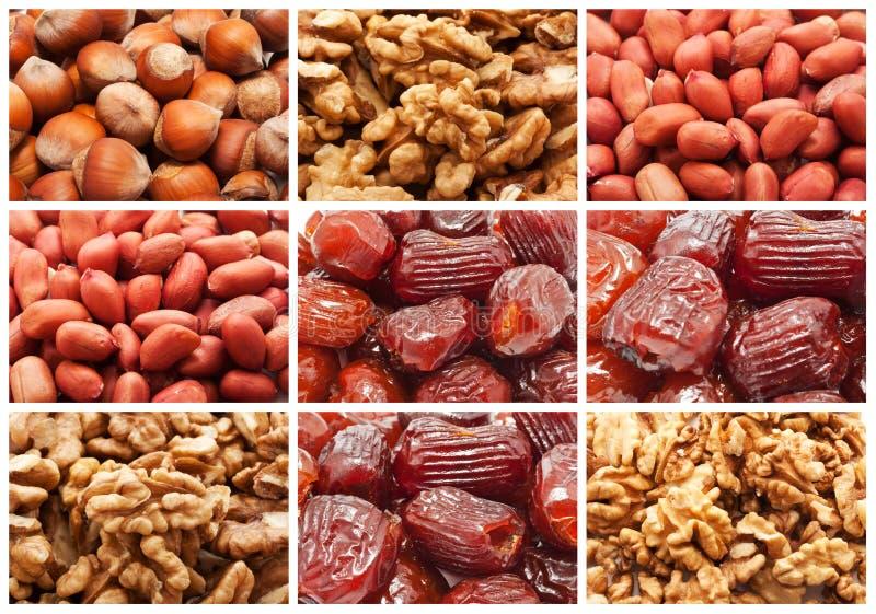 Frutas y nueces secadas foto de archivo libre de regalías