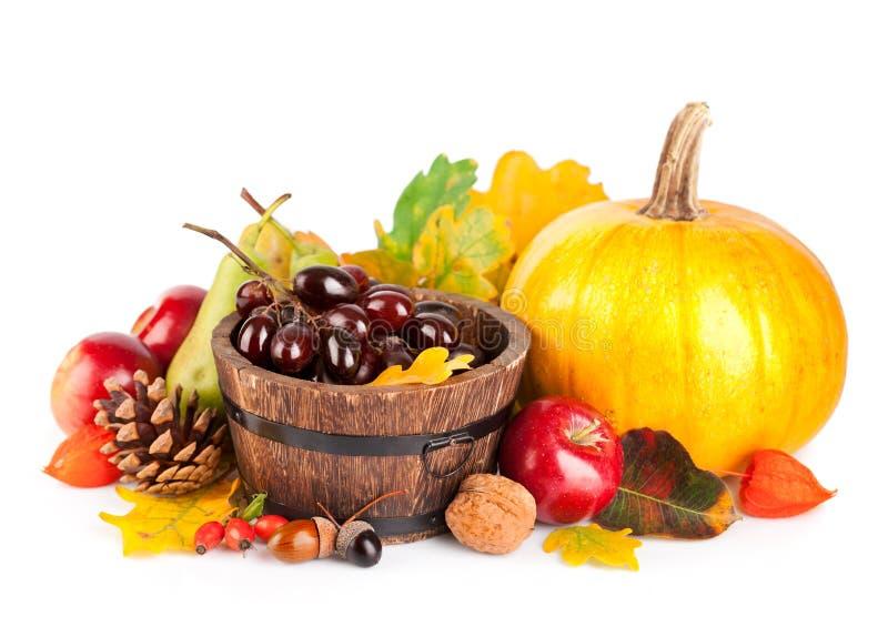 Frutas y verdura otoñales de la cosecha fotografía de archivo libre de regalías