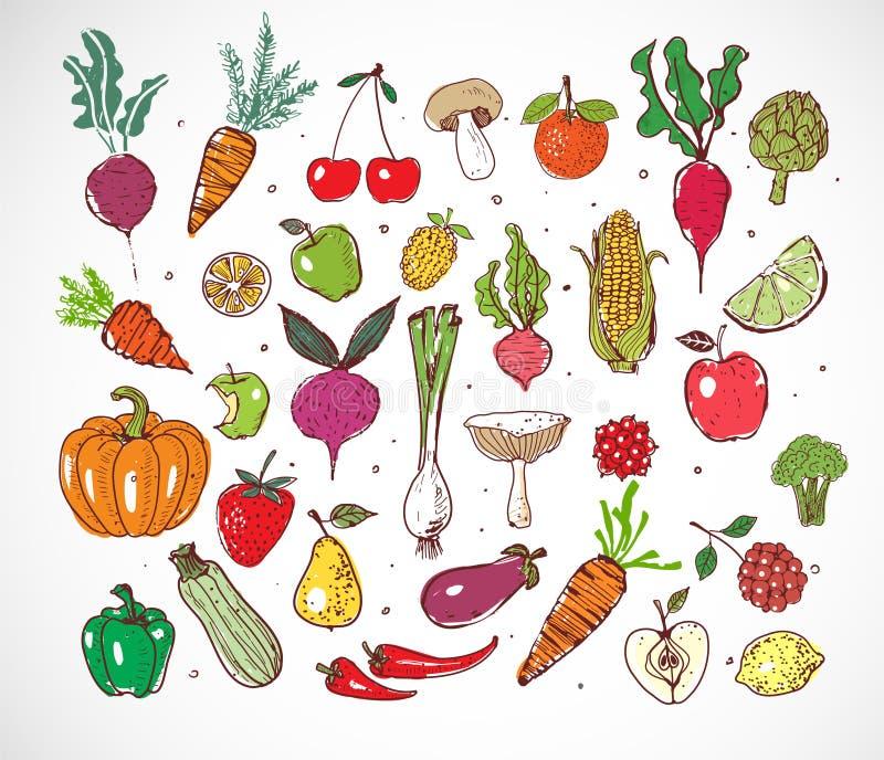 Frutas y verduras coloreadas del garabato en el fondo blanco Ejemplo del bosquejo del vector de la comida sana ilustración del vector