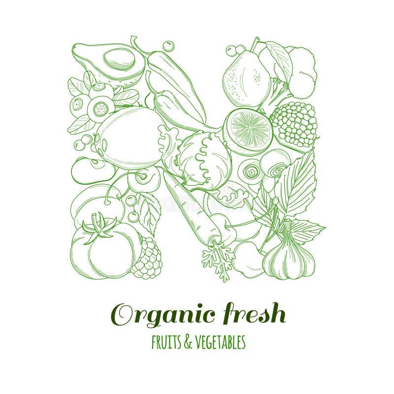Frutas y verduras frescas de la granja orgánica del logotipo del modelo de la letra N ilustración del vector