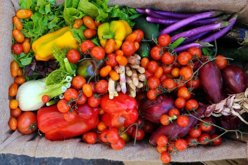 Frutas y verduras frescas orgánicas apenas harversted para la venta fotografía de archivo