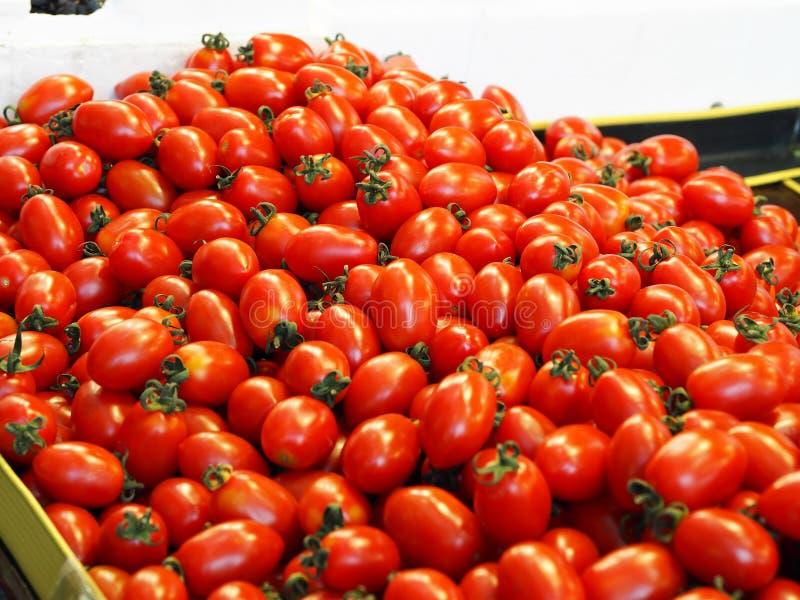 Frutas y verduras tradicionales del mercado, tomate foto de archivo