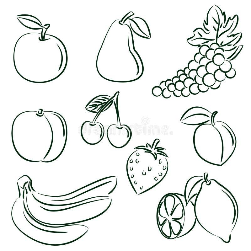 Frutifica a coleção ilustração royalty free
