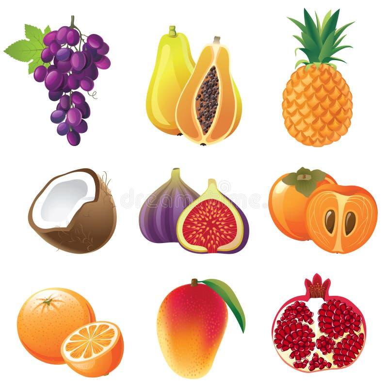 Frutificam os ícones ilustração royalty free