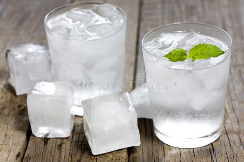 Fruto cocktail fotografia de stock