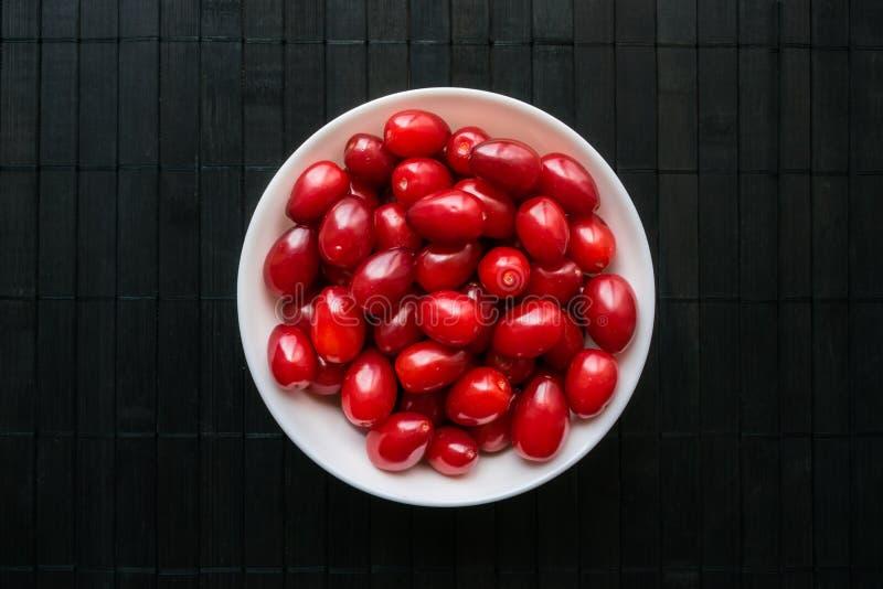 Fruto comestível do corniso da cereja de cornalina Corniso fresco (Cornus s imagens de stock