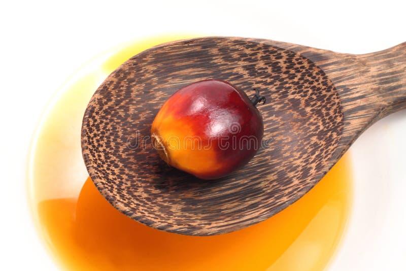 Fruto da palma de óleo foto de stock