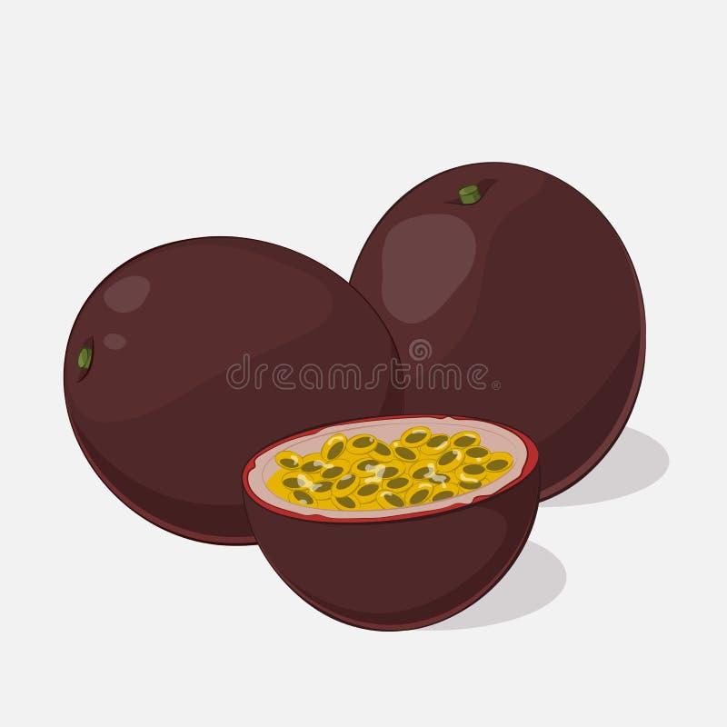 Fruto de paixão suculento brilhante no fundo cinzento Delicioso doce para seu projeto no estilo dos desenhos animados Ilustração  ilustração do vetor