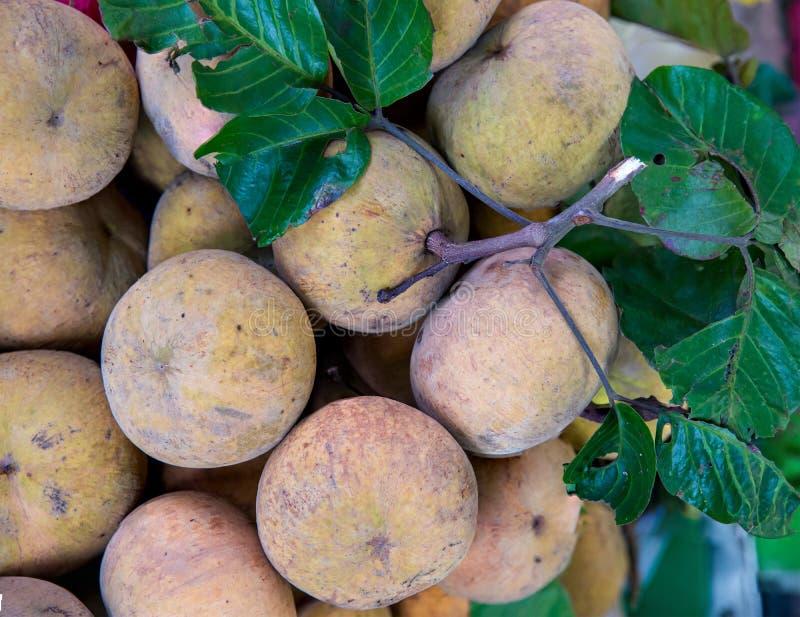 Fruto de Santol no mercado de Tail?ndia Fruto fresco do santol da pilha no mercado fotos de stock royalty free