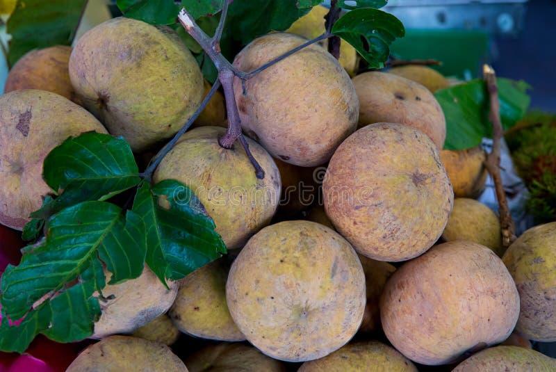 Fruto de Santol no mercado de Tail?ndia Fruto fresco do santol da pilha no mercado imagem de stock