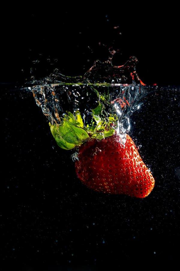 Fruto de SStrawberry fotografia de stock