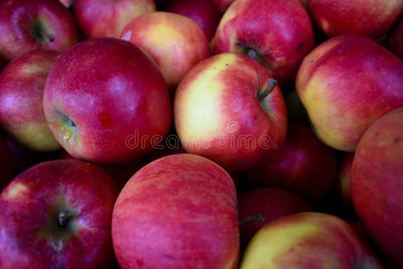 Fruto de vista delicioso do alimento do supermercado das maçãs amarelas vermelhas fotografia de stock