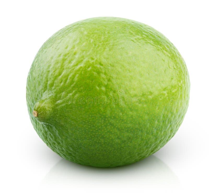 Fruto do cal do citrino no branco fotos de stock royalty free