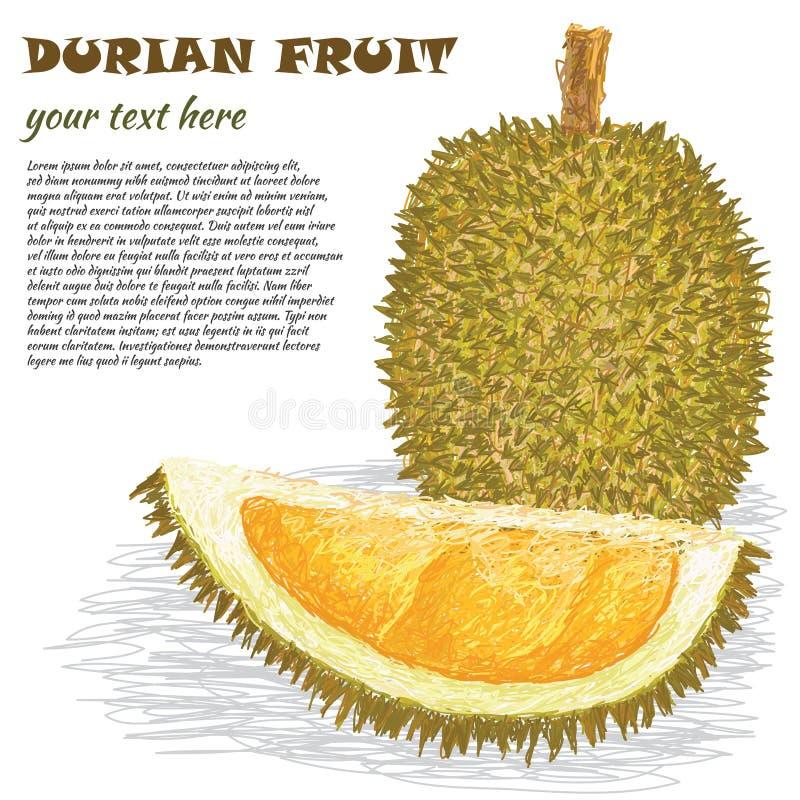 Fruto do Durian ilustração royalty free