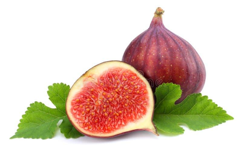 Fruto do figo com a folha verde isolada no branco Trajeto de grampeamento fotografia de stock royalty free