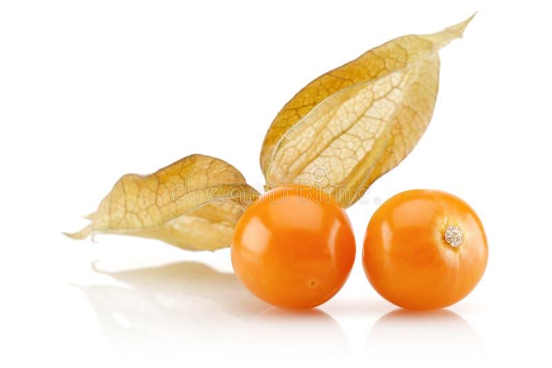 Fruto do Physalis ou baga dourada imagens de stock royalty free