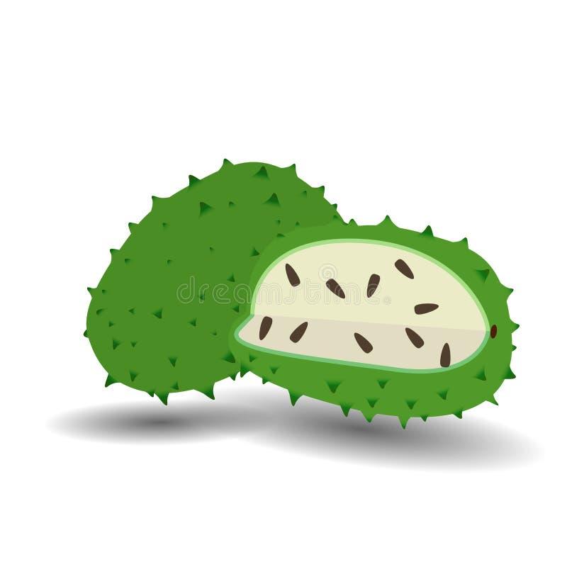 Fruto do fruto do Soursop no vetor branco do fundo ilustração royalty free