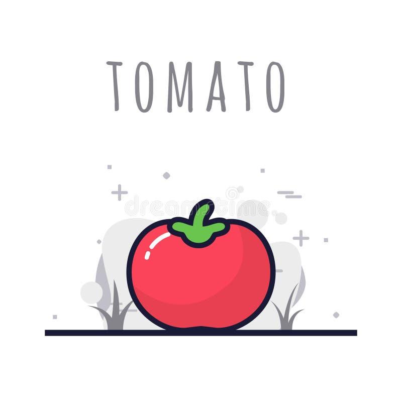 Fruto do tomate fresco ilustração royalty free