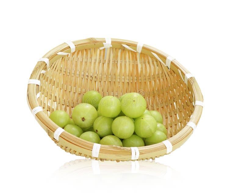 Fruto do verde de Amla, groselha ndian imagens de stock