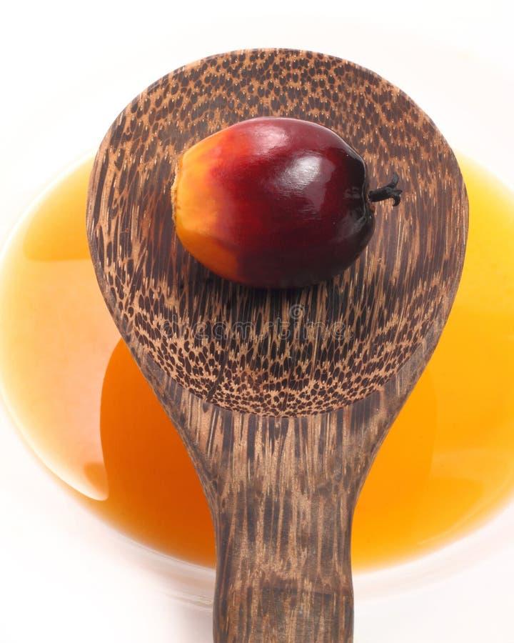 Fruto e óleo da palma imagem de stock